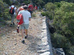 activity_hiking_9